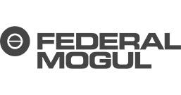 Referenzkunden INFRANORM® - Federal-Mogul